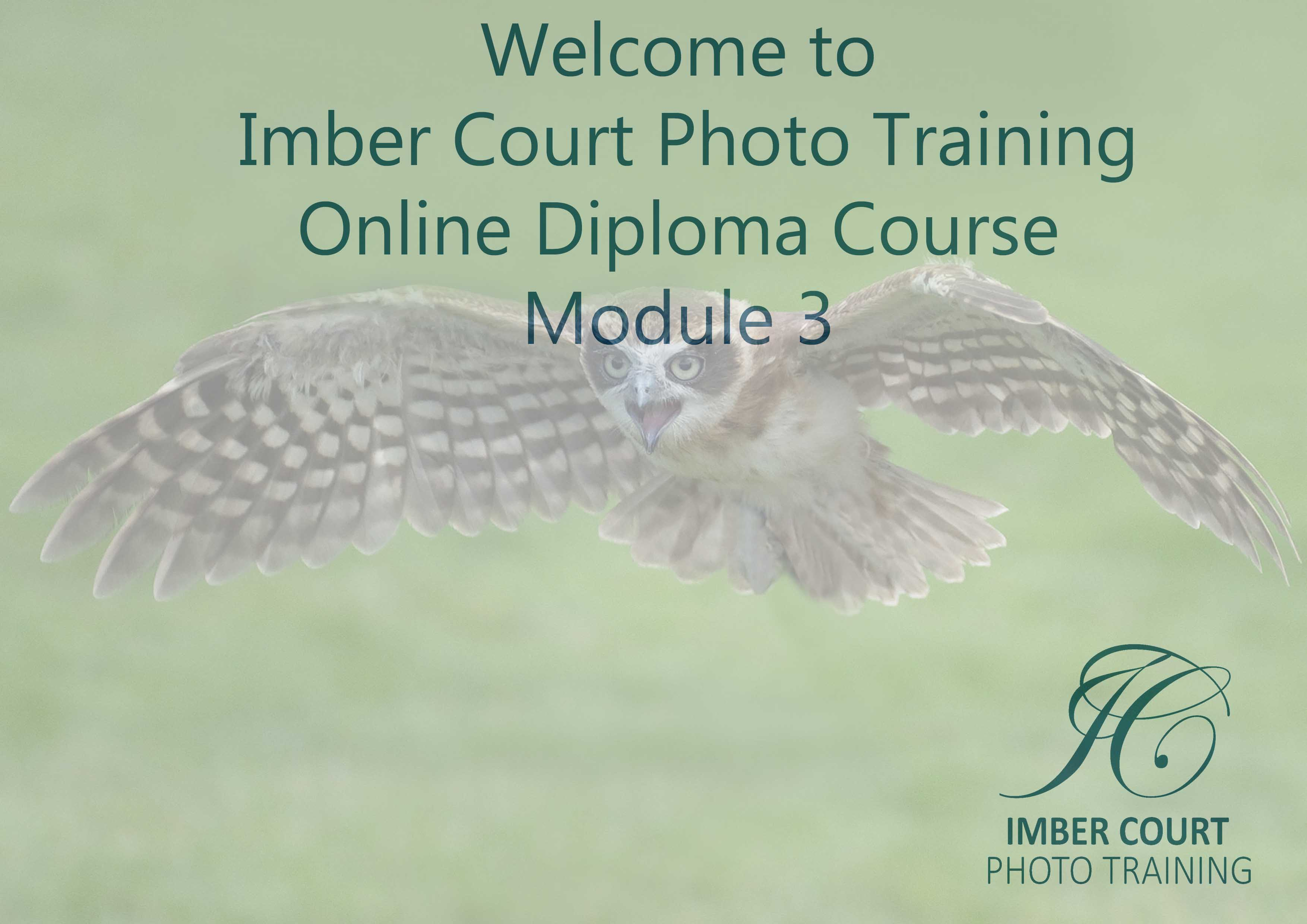 Beginners Online Photography Course Module 3